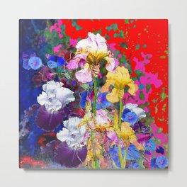 Decorative Spring  Garden Yellow & Pink Iris in Blue-Red Metal Print