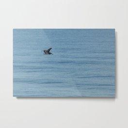 Flying over the Ocean Metal Print