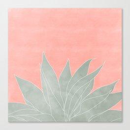 peachy agave Canvas Print