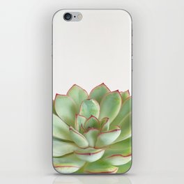 Green Succulent iPhone Skin