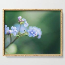 Brunnera Macrophylla - Siberian Bugloss Serving Tray