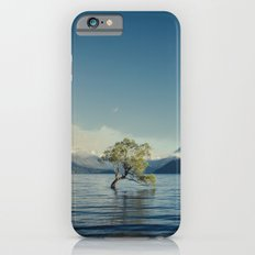 Emerald tree iPhone 6s Slim Case