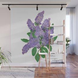 Lilacs: Syringa Wall Mural