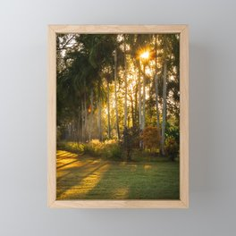Sunburst at Litchfield National Park Framed Mini Art Print