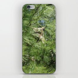 Can you find the owl iPhone Skin