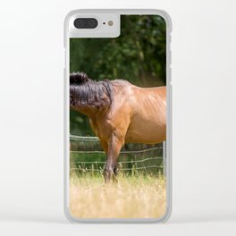 Royal class of horses, an Arabian thoroughbred Clear iPhone Case