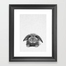 Bunny rabbit sitting Framed Art Print