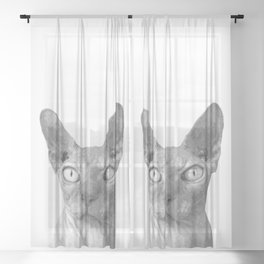 Black and White Sphynx Cat Sheer Curtain