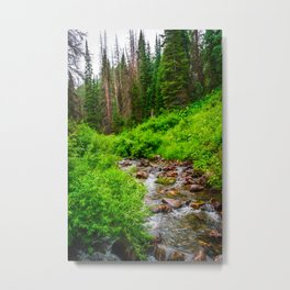 Wasatch Mountains Forest Creek Print Metal Print