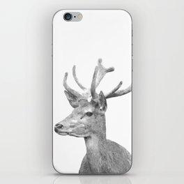 Black and white deer animal portrait iPhone Skin