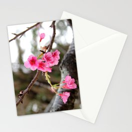 In full bloom Stationery Cards