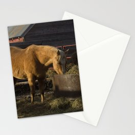 Solstice Morning Breakfast Stationery Cards