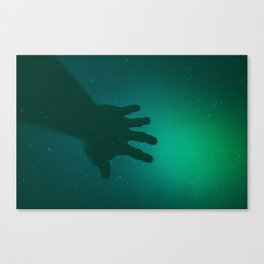 Forgotten Cedar Canvas Print