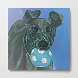 Fly the Whippet Dog Portrait Metal Print
