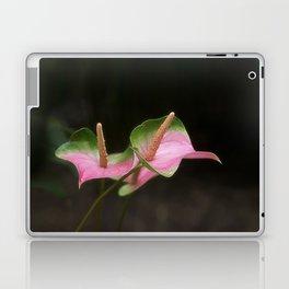 Pink Anthurium Laptop & iPad Skin
