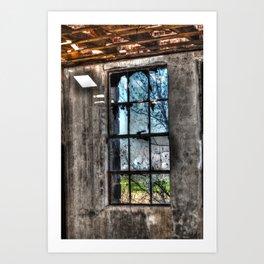 Through The Glass Art Print