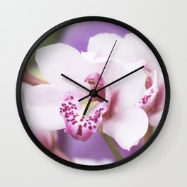 Orchid in a box Wall Clock