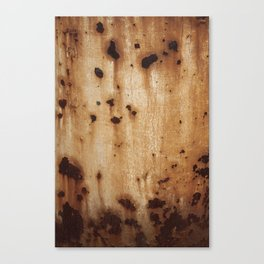 Rust at it's best Canvas Print
