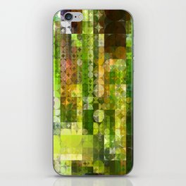 Cactus Garden Abstract Circle Sections 2 iPhone Skin