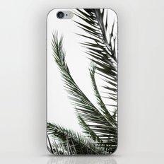Palm Trees 3 iPhone Skin