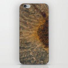 Rusted Water iPhone & iPod Skin