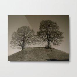 Twin Trees Metal Print