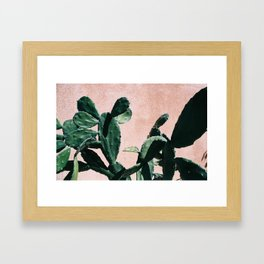 Cactus Against Peach Wall Framed Art Print