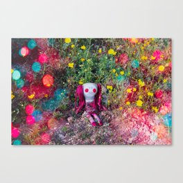 Molly's PlayGround Canvas Print