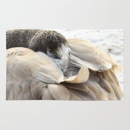 Young Trumpeter Swan by Teresa Thompson Rug