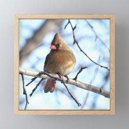 Madame cardinal 2020b Framed Mini Art Print