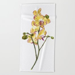 Yellow Phalaenopsis Orchid Traditional Artwork Beach Towel