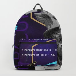 Ancient Gods and Planets: NASA Project Mercury Backpack