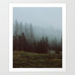 YNP fog 3 Art Print