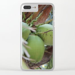 Fruit Of The Palm Clear iPhone Case
