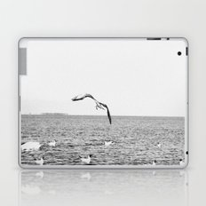 seagul Laptop & iPad Skin