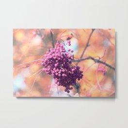 Sweet Pink Autumn Berrys Metal Print