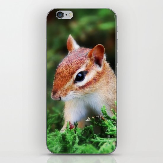Chipmunk iPhone & iPod Skin