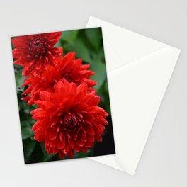 Fresh Rain Drops - Red Dahlia Stationery Cards