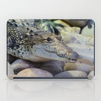 crocodile iPad Cases featuring Crocodile by PICSL8