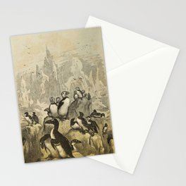 Naturalist Penguin And Puffin Stationery Cards