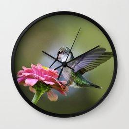 Tranquil Hummingbird Wall Clock