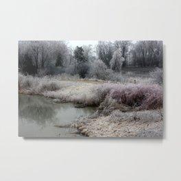 Frozen Elmira Landscape Metal Print