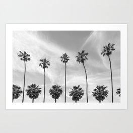 Palm Trees in La Jolla, California Art Print