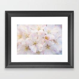Ornamental Cherry Blossom Framed Art Print