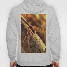 Elegant Red Darter Dragonfly Hoody