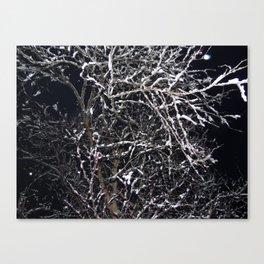 Skeleton of a Tree Canvas Print