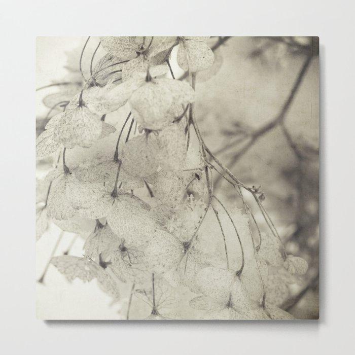 snow and flowers Metal Print