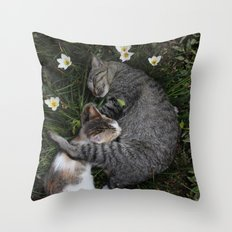 Sleep [A CAT AND A KITTEN] Throw Pillow