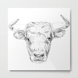 Bull illustration Metal Print