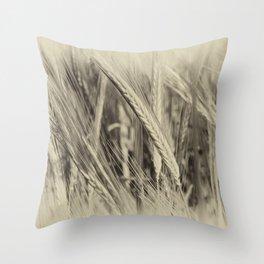 Ears of Barley Throw Pillow